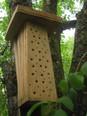 Insekten-Nisthilfe